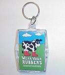 planned_parenthood_wear-your-rubbers-keychain.jpg